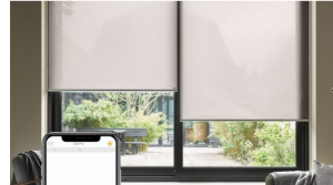 double roller blinds Adelaide